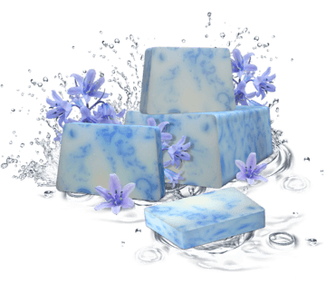 Spanish bluebell Sapone